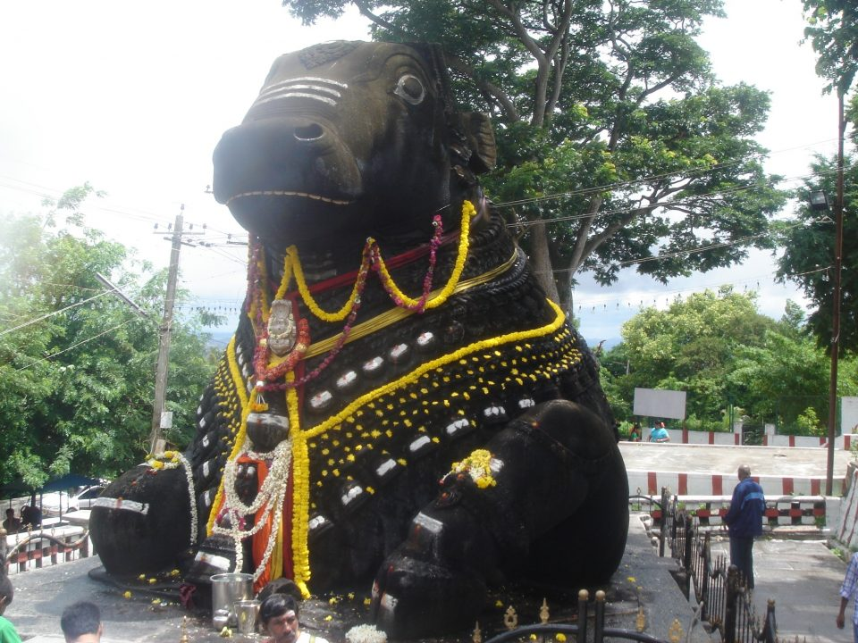 Couleurs et contrastes en Inde du sud entre réflexion et histoire