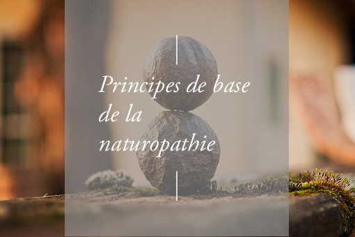 Principes de base de la naturopathie